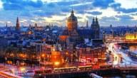 المشاريع الصغيرة الناجحة في هولندا …شركة تصدير الزهور