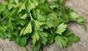 مواسم زراعة البقدونس وطريقة زراعة  البقدونس