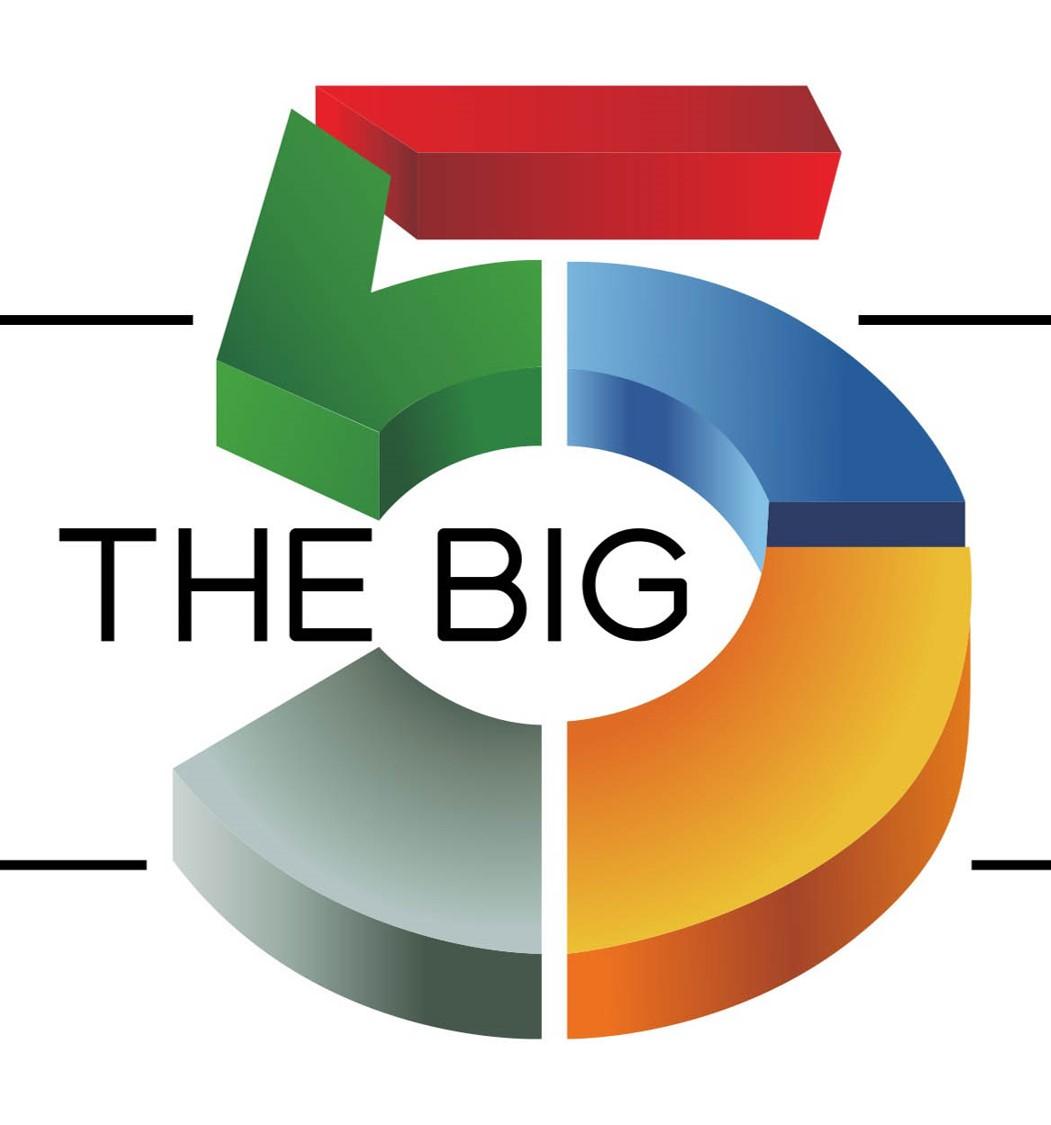 The big 5: rollen van de teamcoach bij de weg naar zelforganisatie