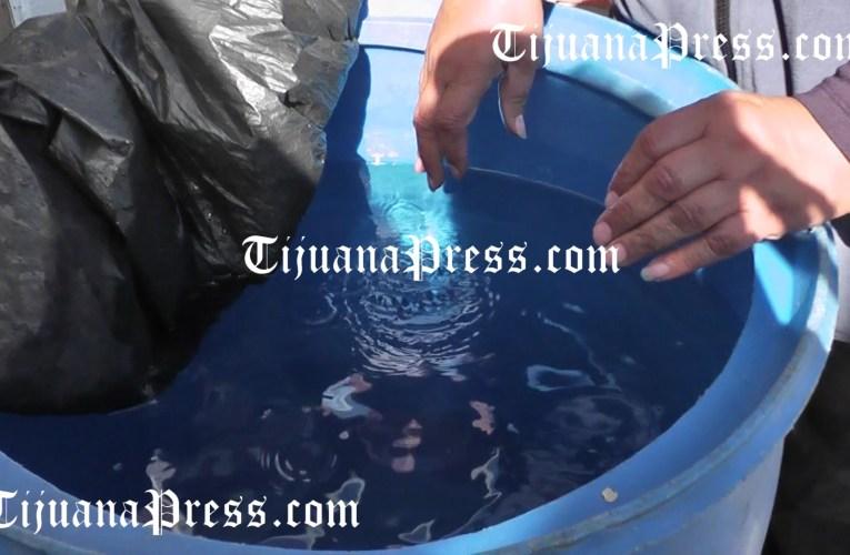 Corte extraordinario de agua