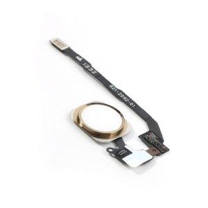 אייפון 5S כפתור בית (פלקס)- זהב