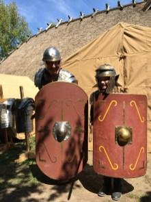 Roos de Romein in de aanval