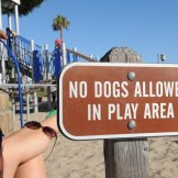 "Wut? ""No dogs allowed in play area""? That's outrageous!"