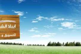 مجموعة أيبلا الشام للعقارات  دمشق