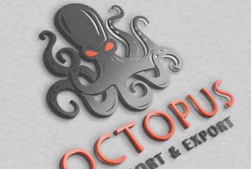 Octopus  دمشق