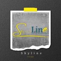 Skyline company  مركز تدريب السويداء