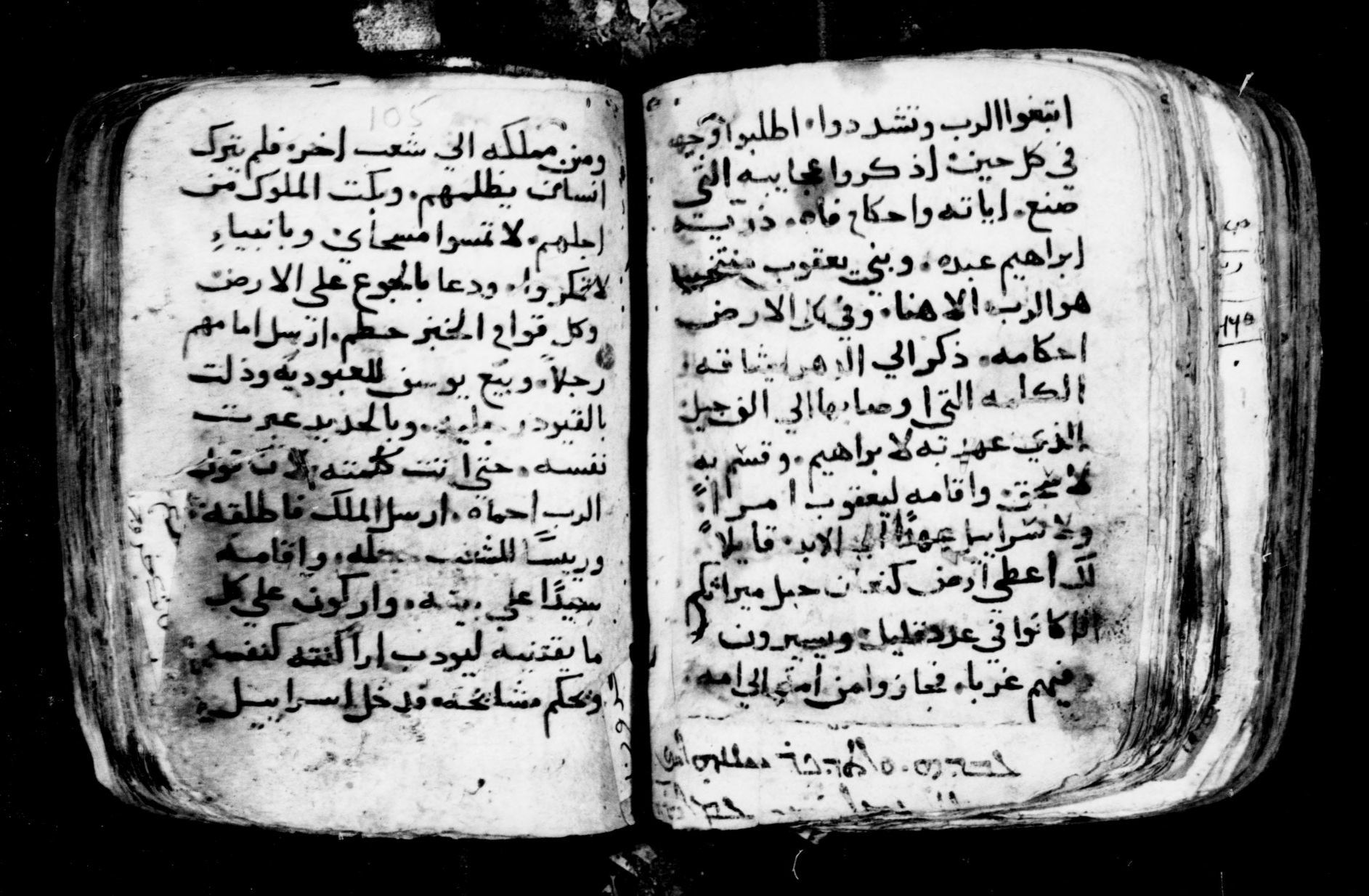 Manuscripts In The Libraries Of The Greek And Armenian