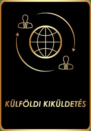 Külföldi kiküldetés