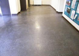 Thermoplastic floor tiles before