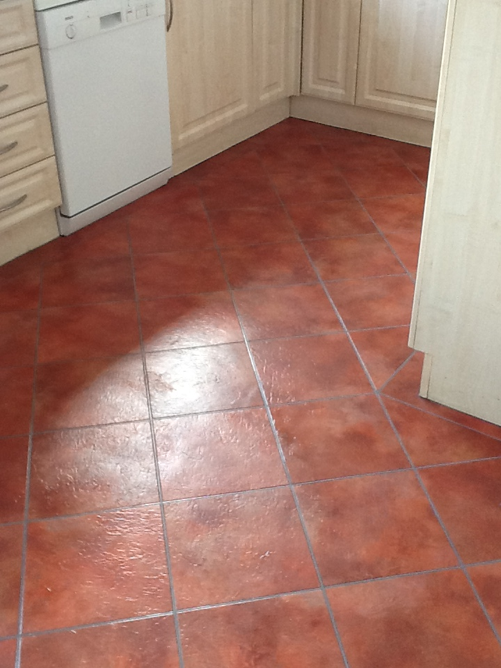 Amtico Floor Stripping Cleaning Sealing And Polishing Knowle