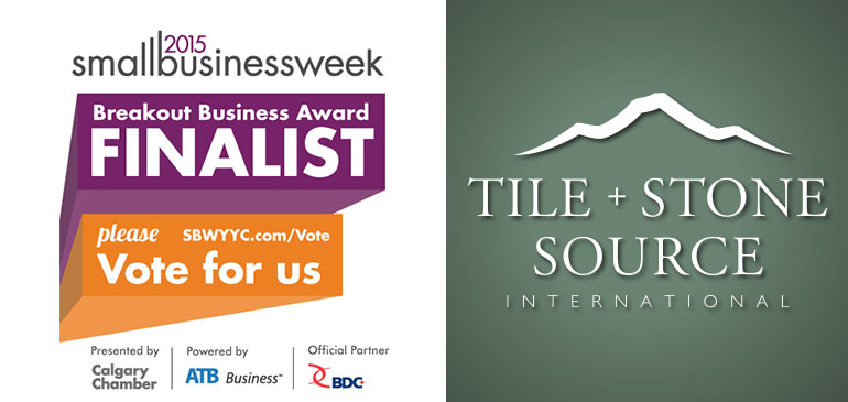 2015 Small Business Week Breakout Business Award Finalist Please Vote for Us!