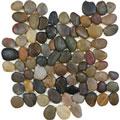 Beach Round Tumbled Pebble Mosaic
