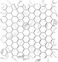 "Mayfair 1.25""x1.25"" Hexagon Mosaic Statuario Venato Polished"