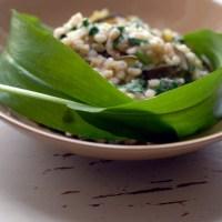 orzotto con aglio orsino