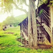 The oldest farmhouse in Buncombe County