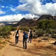 Catalina State Park Tucson