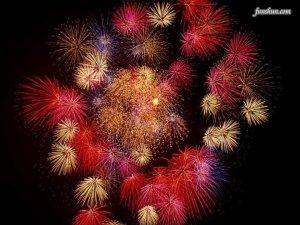 fireworks blk bkgrd pinks reds