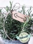 Rosmarin - Växtetikett