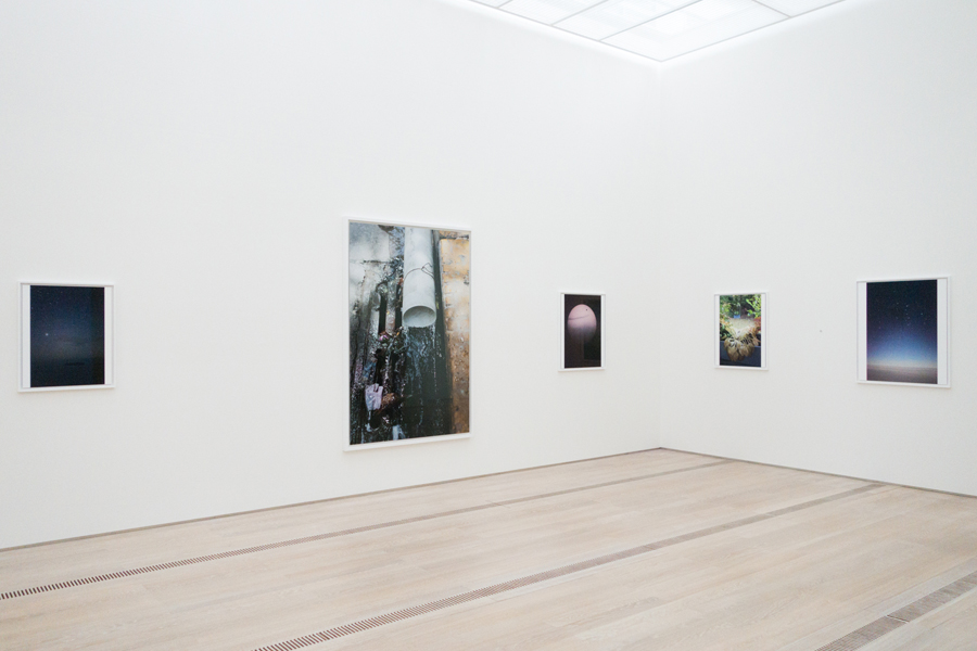 Collection display, Fondation Beyeler, 2014