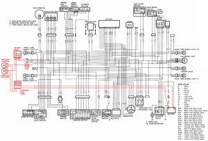 InspiredModifCar: buell wiring diagram