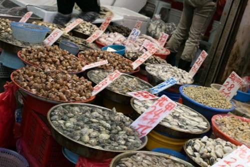 Dozens of bowls containing small shellfish including snails