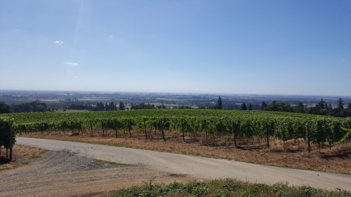 View from the yard at Durant - I love the Willamette Valley Views