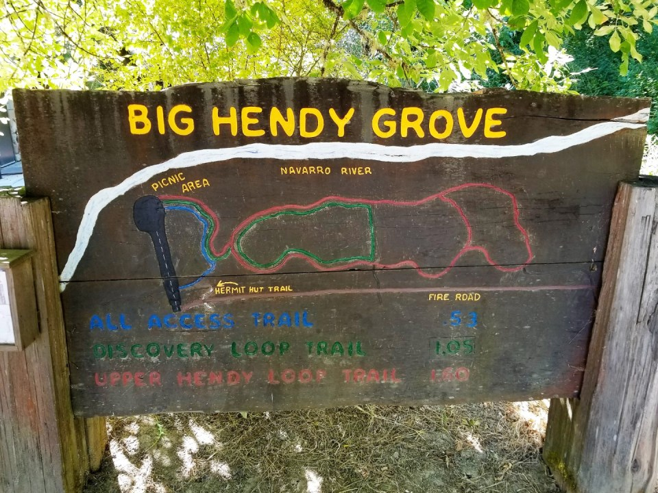Big Hendy Grove - Easy Trails