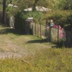 Garden (post), 40 x 40 cm, 2008
