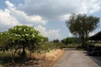 Aufbruch im Lilawalai
