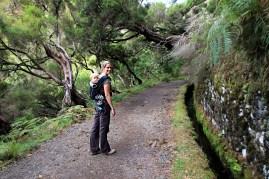 Levada zum Risco Wasserfall