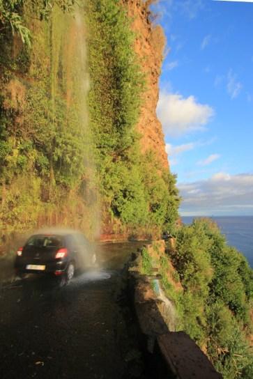 Mr. Wash Madeira Style