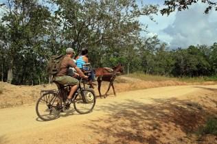 Überhöhtes Verkehrsaufkommen