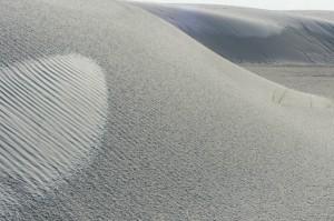 White Sands #8112