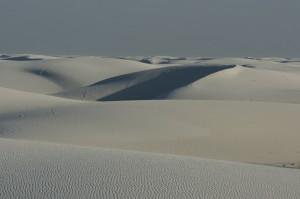 White Sands #8153
