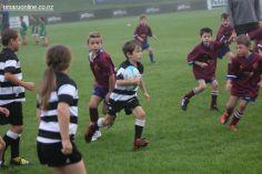Junior Rugby Kicks Off 00056