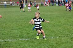 Junior Rugby Kicks Off 00346