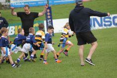 Junior Rugby Kicks Off 00409