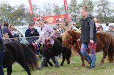Mackenzie Show Grand Parade 0106