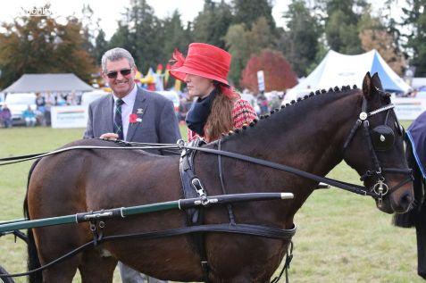 Mackenzie Show Grand Parade 0142