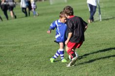 Junior Football 0089