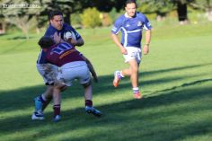 Point v Old Boys As First-half 0082