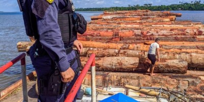 load-of-suspected-illegal-wood-logs-in-Manua-Brazil