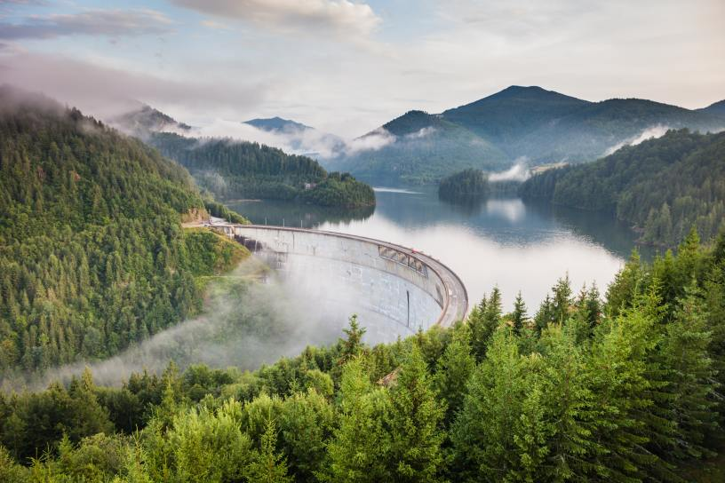 Romanian timber companies fined a record.