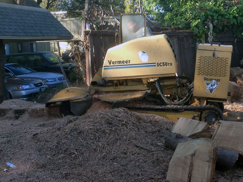 Stump removal in Walnut Creek with a Vermeer SC50TX stump grinder