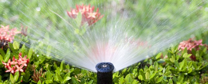 in ground sprinkler system