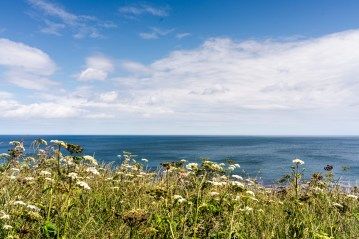 coast view_-2