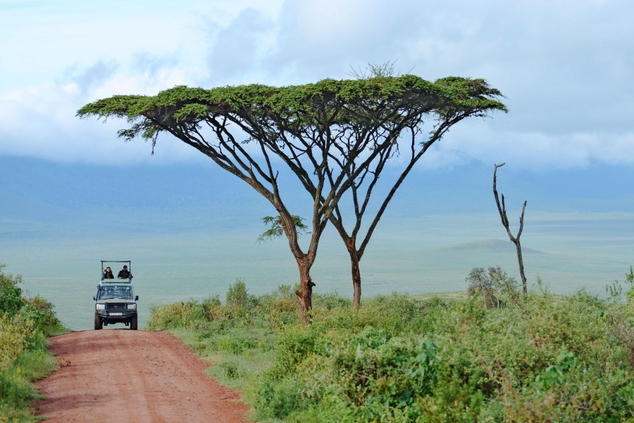 self-drive-ngorongoro-tanzania