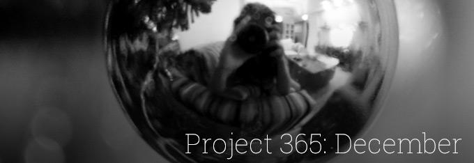 Project 365: December