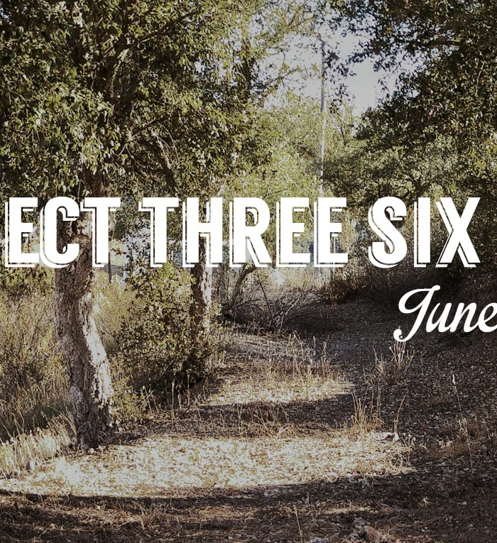June Project 365