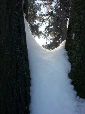 White-blanket-of-snow-07